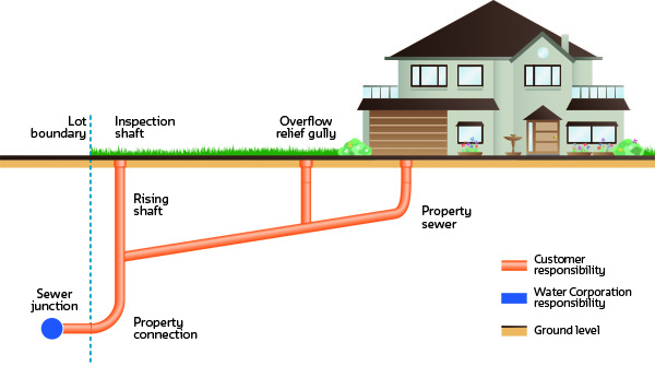 Diagram showing where the responsibilities lie between Water Corporation and the proper owner for sewer plumbing